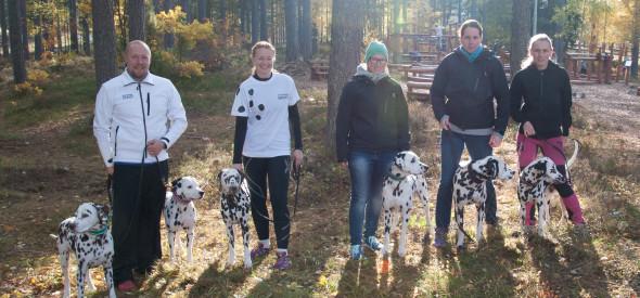 Svenska Dalmatiner-Sällskapets SM-lag
