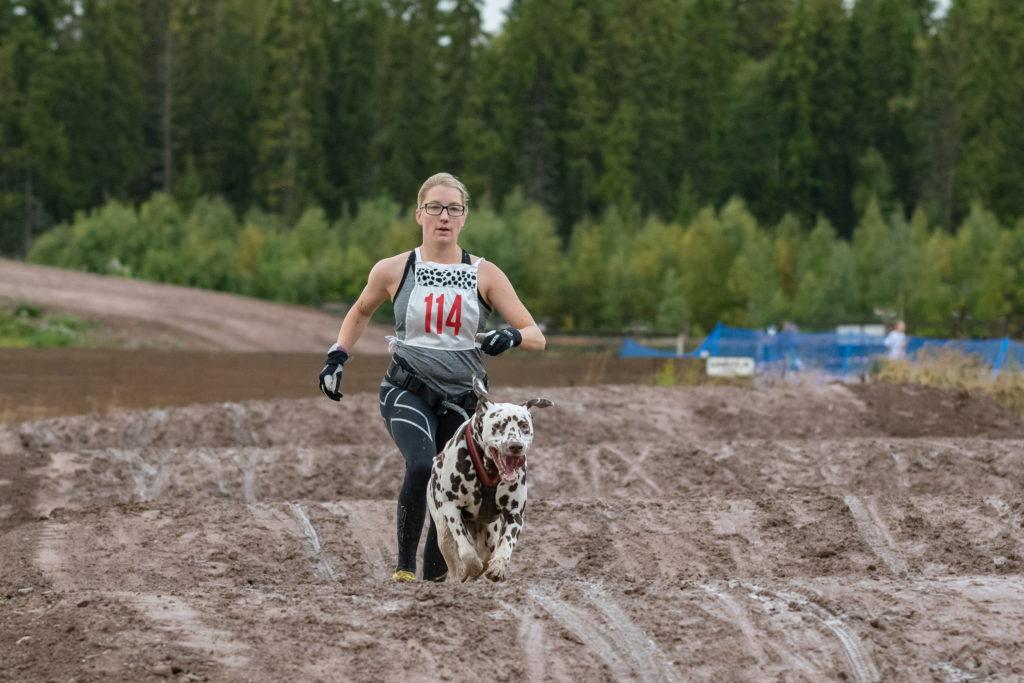 Hanna Norin med Christina Holms hund Pacy. Tvåa i klassen canicross damer senior, grupp B. Foto: Torbjörn Jonsson.